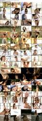 発売日: 2012/02/22